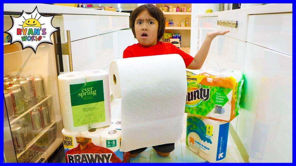 Paper Towel Experiment Poster